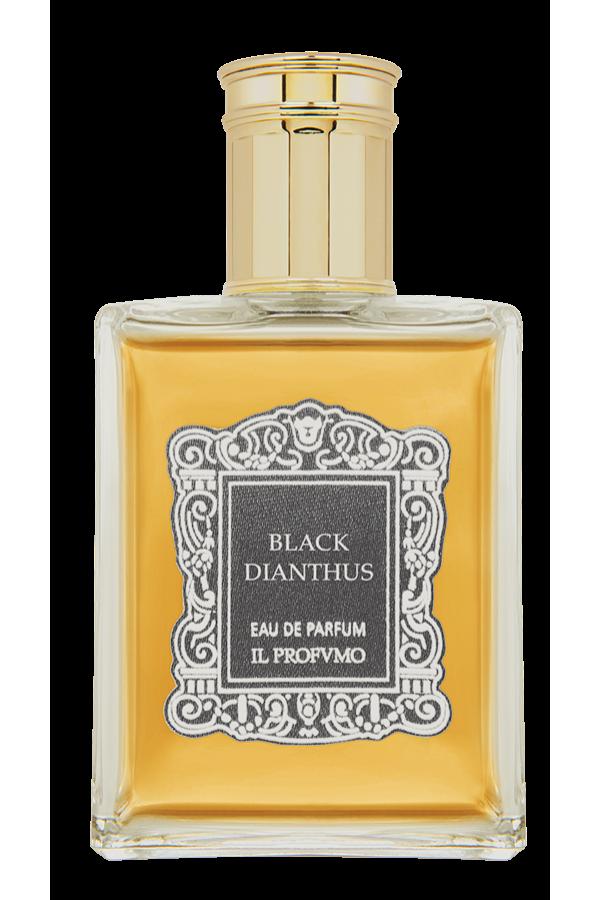 Black Dianthus
